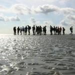 Intertidal hiking