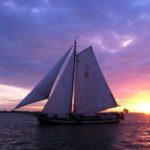 Sport of this week – Sailing!